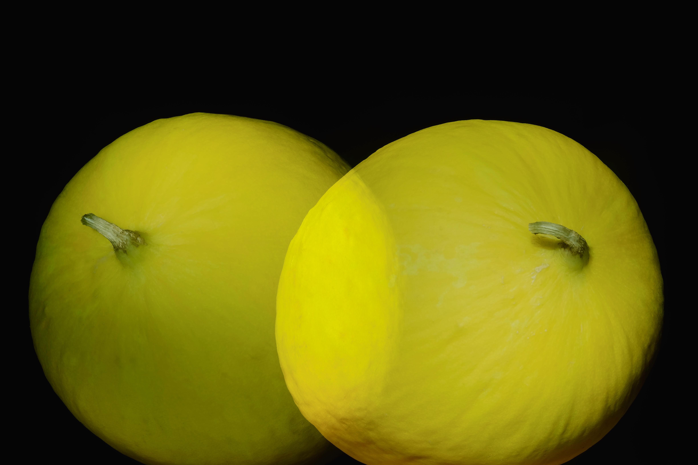 yellow water melons 5 Charolaise © KIM JONKER
