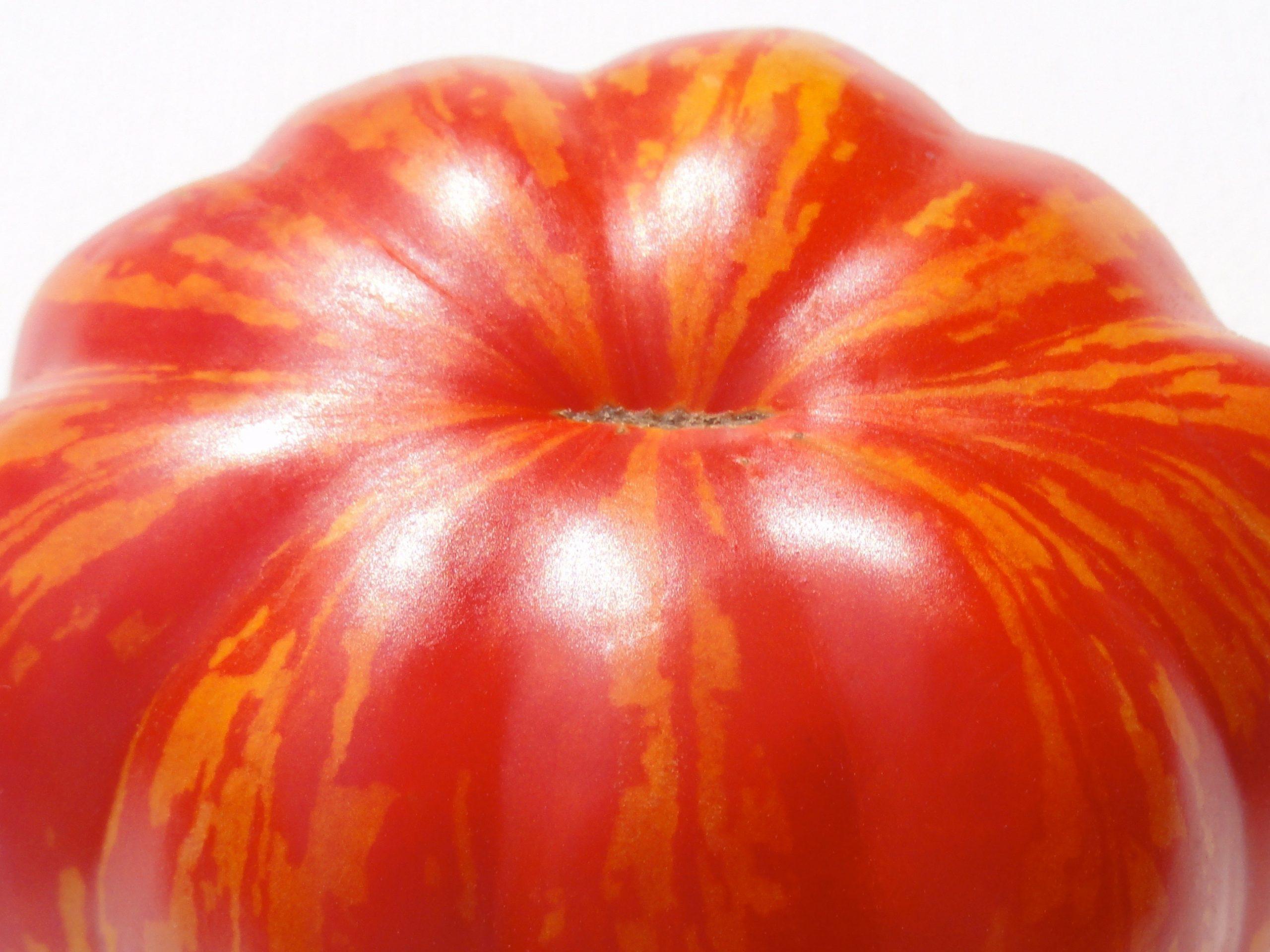 marmande tomato © KIM JONKER